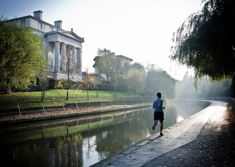 spring med fitbit